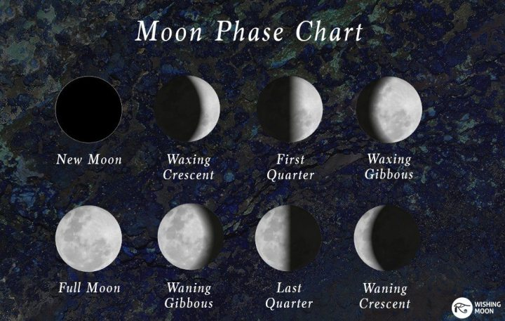 moon-phase-chart1-1024x650